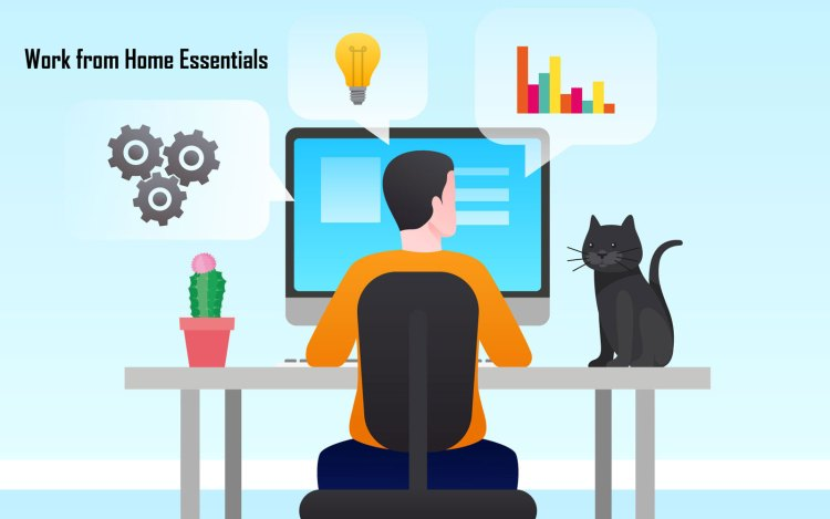 Top 5 Work from Home Essentials you Need to Get Right