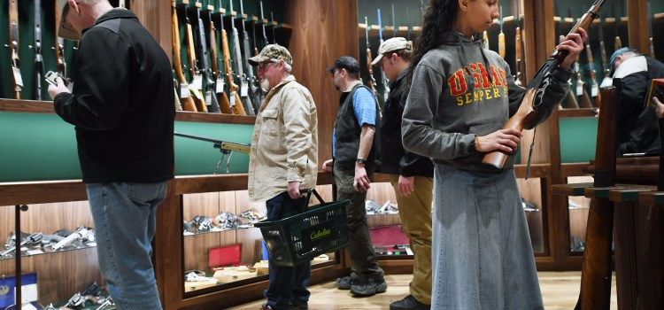 Beware The Siren Call of Government Control On Gun Sales