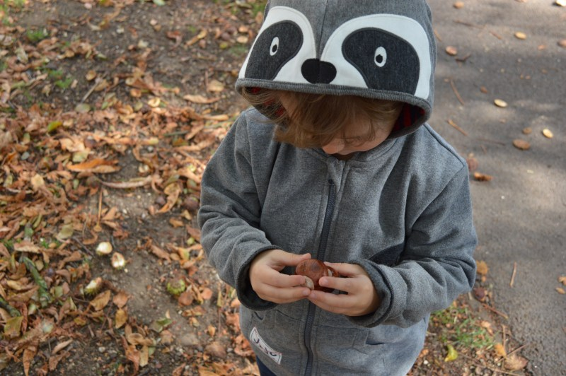 Boys' winter animal hoodie