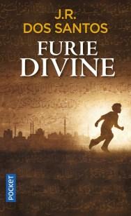 https://www.pocket.fr/tous-nos-livres/romans/romans-etrangers/furie_divine-9782266272926/