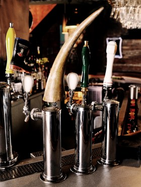*Center Tap is our Rhino Special Lager / . . . p.s. It's a fake horn