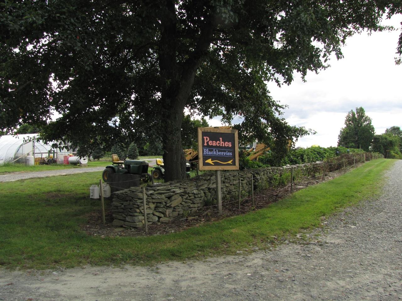 Sweet Berry Farm in Middletown, RI