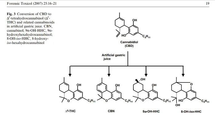CBD to THC?