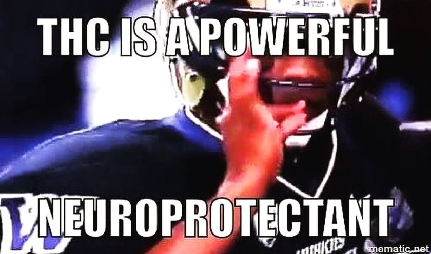 """Super """"Bowl"""" LV: THC is a Powerful Neuroprotectant"""