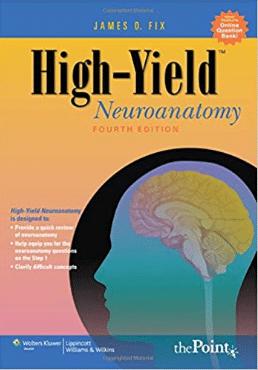 High-Yield TM Neuroanatomy (High Yield series) Fourth Edition PDF