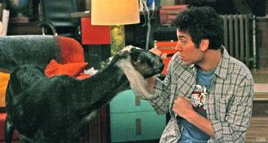 Ted and a Goat