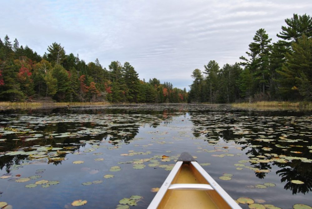 4 day canoe trip in Killarney Provincial Park, Ontario - canoe and lily pads