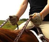 driving-reins