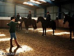 Riding Instructors and Students- Who Are You?