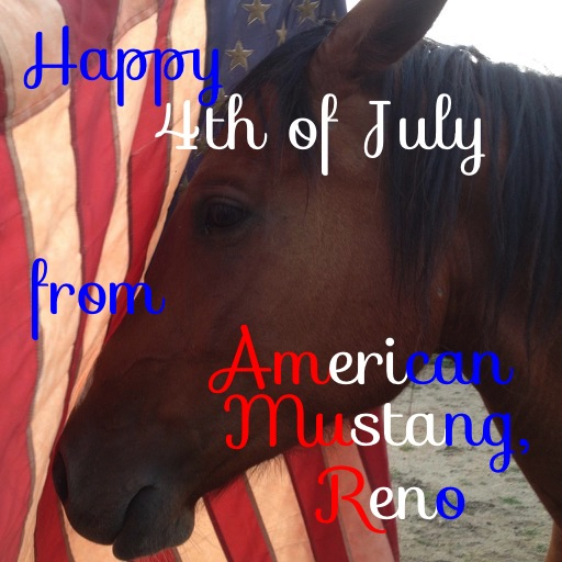 Happy 4th of July from The Riding Instructor & Reno