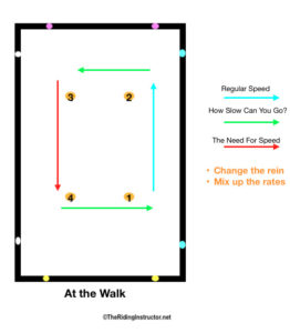 rate the gait walk TheRidingInstructor.net
