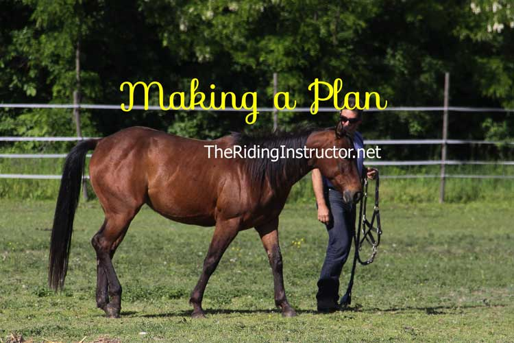 Making a Plan to Get Susie Riding