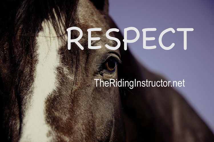 How to Make Your Riding Instructor Happy – Respect