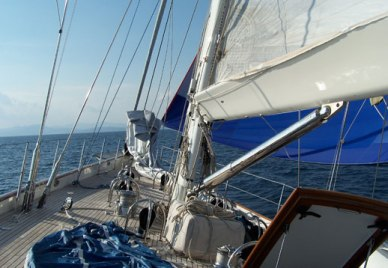 Hydraulic vang service done the right way. The Rigging Company