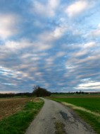 French country - tragic sky