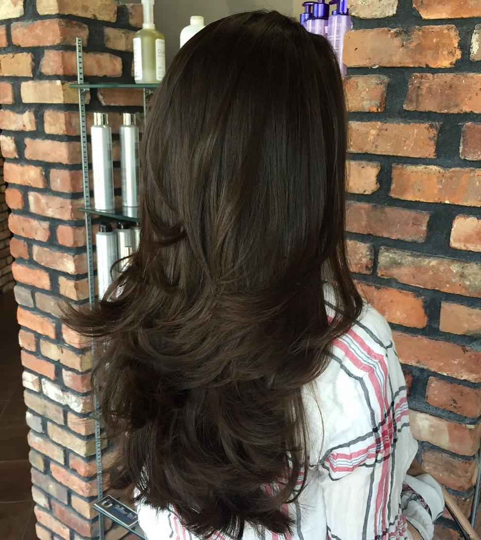 Nice Long Layered Brunette Hairstyle