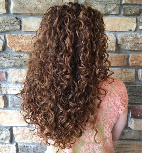 Long Curly Brown Hairstyle with Highlights