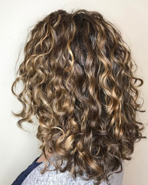 Curly Brown Hair With Dark Blonde Highlights