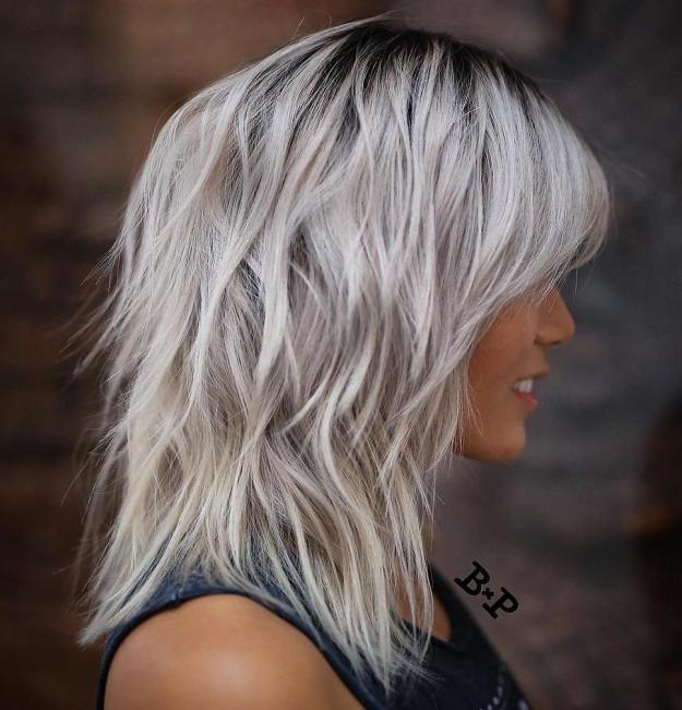 Silver Shag With Black Roots