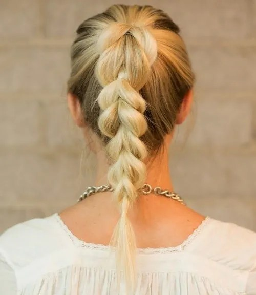 fancy braided pony hairstyle