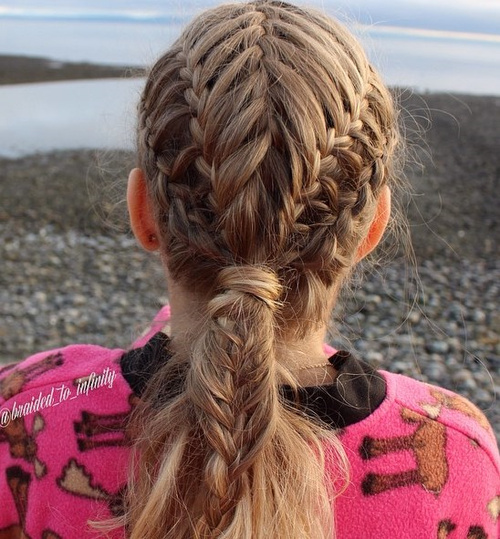 Braided Hairstyle With Low Ponytail