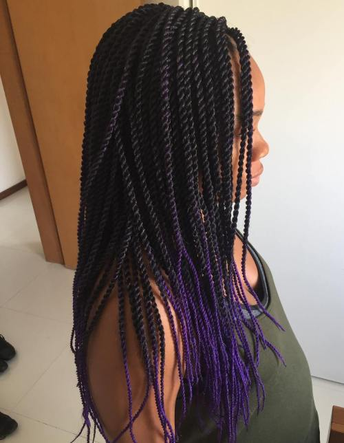 Rope Braids With Purple Ends