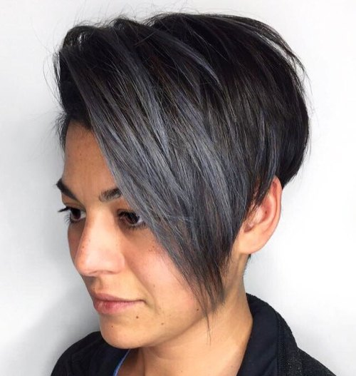 Black Pixie Bob With Blue Highlights