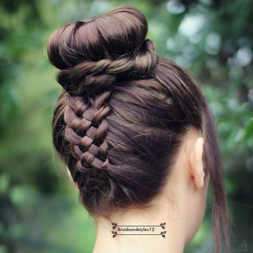 Five Strand Braid Into Bun Updo
