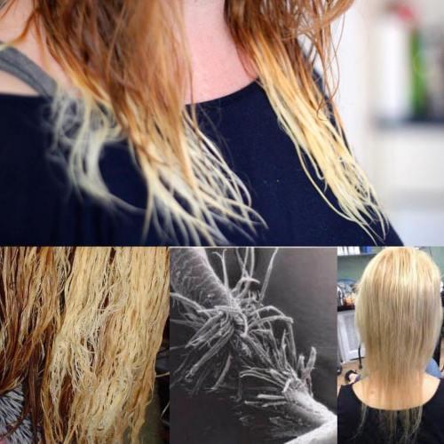 Fried Blonde Hair