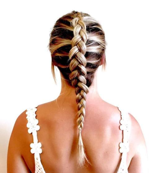 Dutch Braid With Highlights