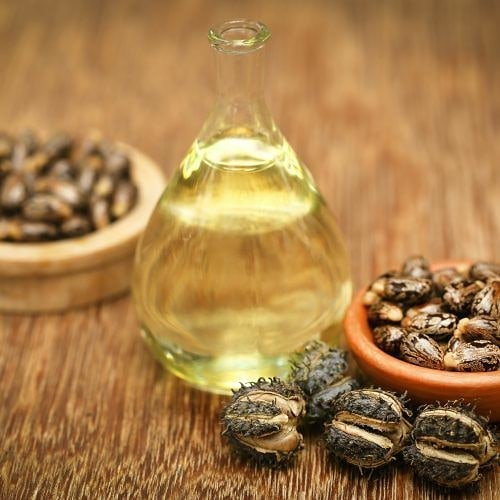 Castor Oil and Seads