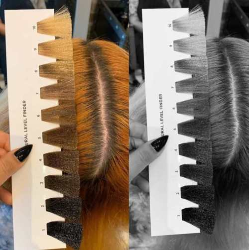 Hack to Determine Hair Color Level
