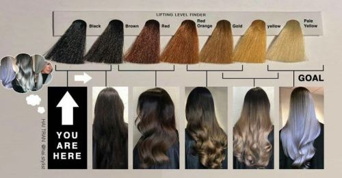 Hair Color You Can Achieve with Your Current Hair Level