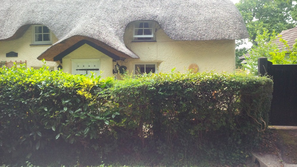 Thatched Houses (6/6)