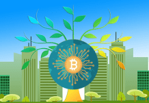Renewable Energy Cryptocurrency Mining