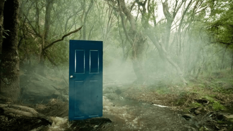 Door in the forest: mystery and fantasy of what lies ahead