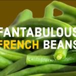 Fantabulous French Beanc