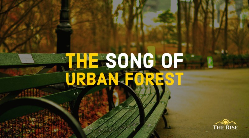 The Song of Urban Forest