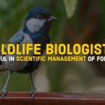 wildlife biologists forests management