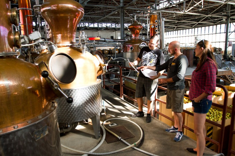 Pot Still, St. George Spirts