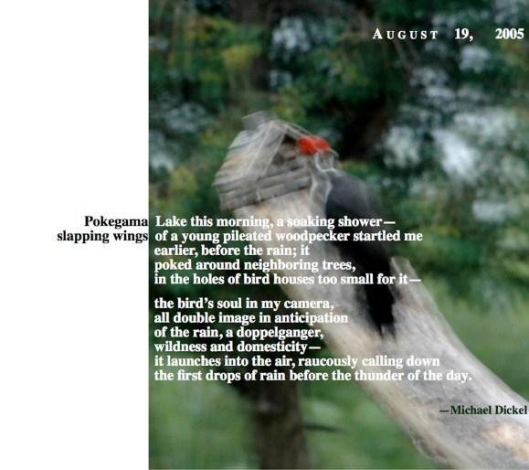 August 19 Michael Dickel