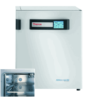 Thermo Heracell VIOS CO2 Incubator 51030962