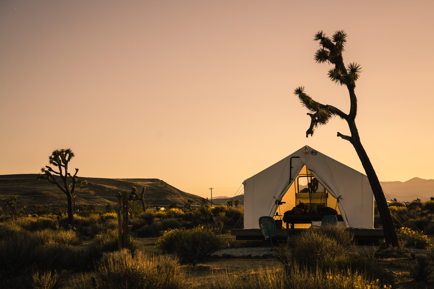 guide to joshua tree national park