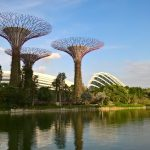 Gardens by the Bay und Supertrees