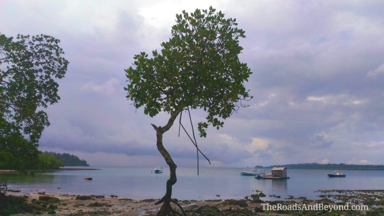 Andaman islands itinerary