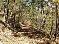 bolar_mountain_trail_wide