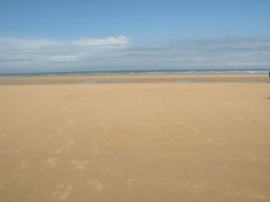Omaha long beach