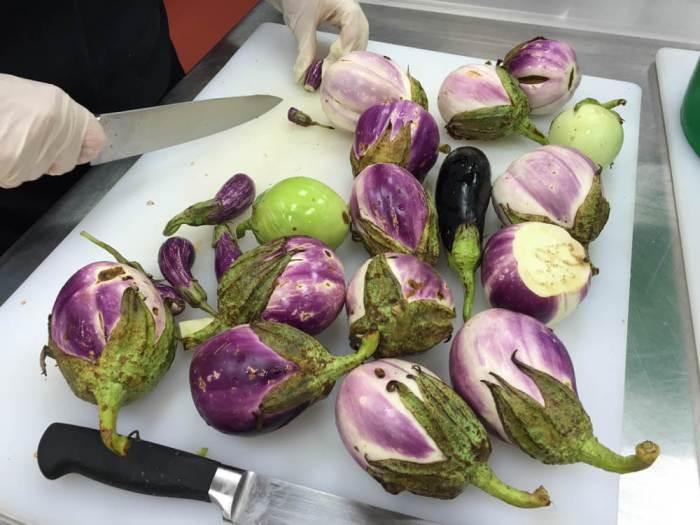 REFB chopping eggplants