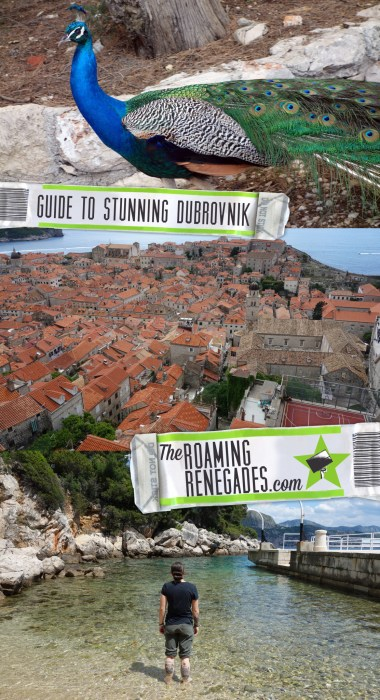 A guide to Dubrovnik, Croatia: The historic pearl of the Adriatic lives up to its name!, Walk the City walls, lokrum, game of thrones, old town, cable car, views, swimming, beaches, harbour, Fort Lovrijenac, things to do in dubrovnik, peacocks