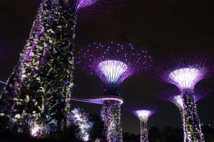 night time, photography, long exposure, night time photography, Gardens by the Bay, Singapore, free, budget, things to do, what to see, must do, must see, what to do in Singapore, Marina Bay, avatar, pandora,